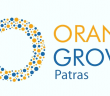 Orange_Grove_Patras