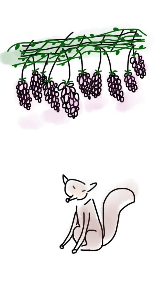 fox-1278118_1280
